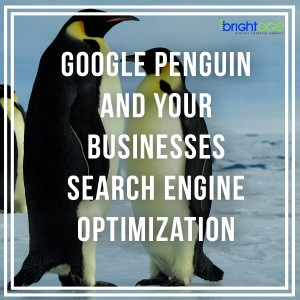 Google Penguin and Your Business Search Optimization