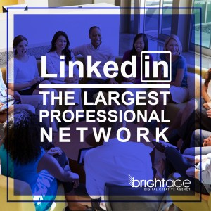LinkedIn The Largest Professional Network