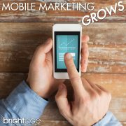mobile-marketing-agency-article